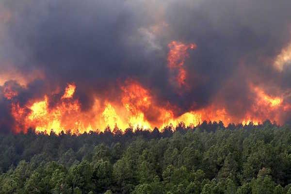 ILICA-Instituto-Longoria-de-Investigacion-Cientifica-Aplicada-Desastres-Naturales-Incendios-Forestales_v003